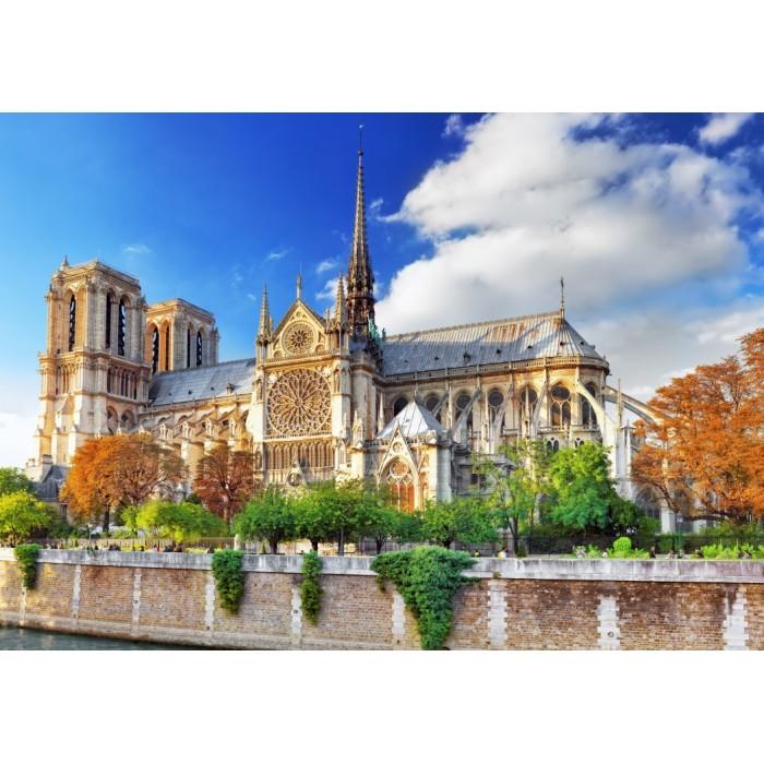 Puzzle Bluebird-Puzzle-F-90001 Cathédrale Notre-Dame de Paris