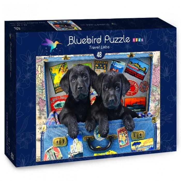 Puzzle Bluebird-Puzzle-70404 Travel Labs