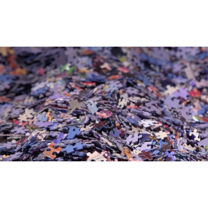 Mystery-Bluebird-Puzzle-4000 Mystery Puzzle without Box & without Image - Bag of 4000 Pieces