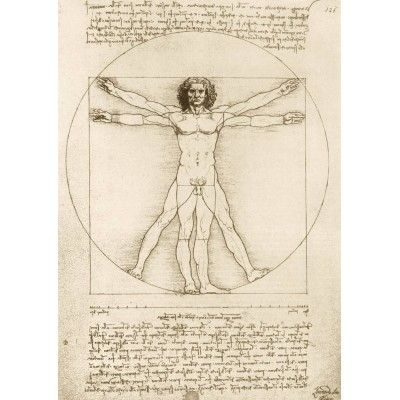 Bluebird-Puzzle - 1000 pieces - Leonardo Da Vinci - The Vitruvian Man, 1490