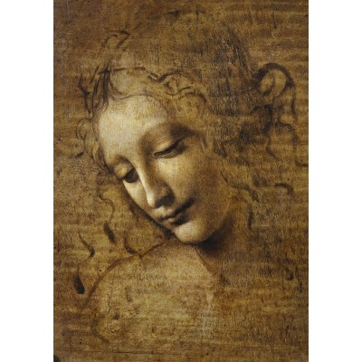 Bluebird-Puzzle - 1000 pieces - Leonardo da Vinci - La Scapigliata, 1506-1508