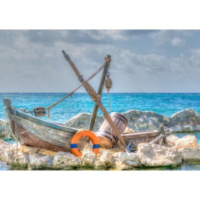 Bluebird-Puzzle - 1500 pieces - Costa Maya