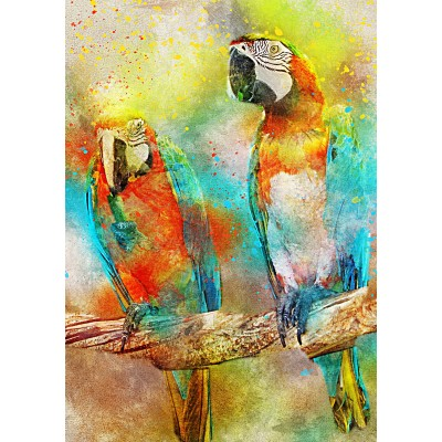 Bluebird-Puzzle - 1000 pieces - Parrots