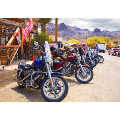 Bluebird-Puzzle - 1000 pieces - Rt 66 Fun Run Oatman Motorcycles 4-16 8377