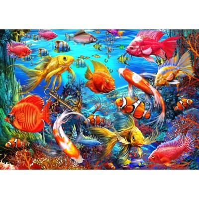 Bluebird-Puzzle - 1500 pieces - Tropical Fish