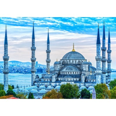 Bluebird-Puzzle - 1000 pieces - The Blue Mosque