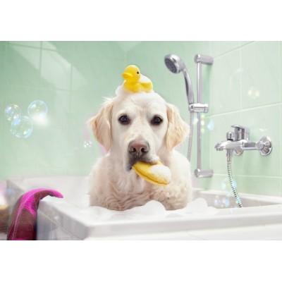 Bluebird-Puzzle - 100 Teile - Bath Time