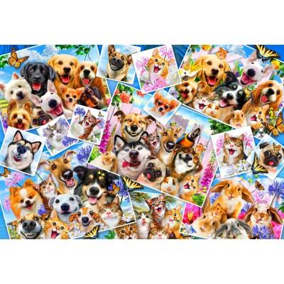 Bluebird-Puzzle - 260 pièces - Selfie Pet Collage