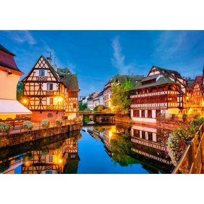 Bluebird-Puzzle - 1500 pieces - Strasbourg, France