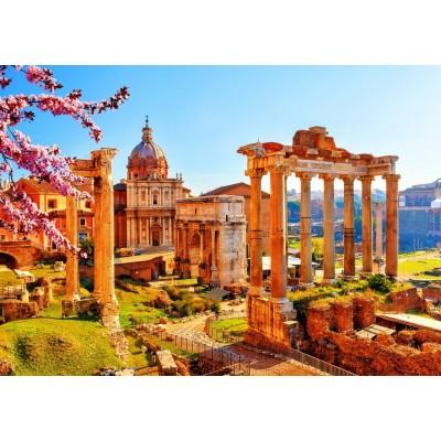 Bluebird-Puzzle - 1000 pieces - Roman Ruins in Spring, Italy
