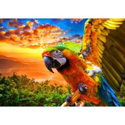Bluebird-Puzzle - 1000 pieces - Parrot