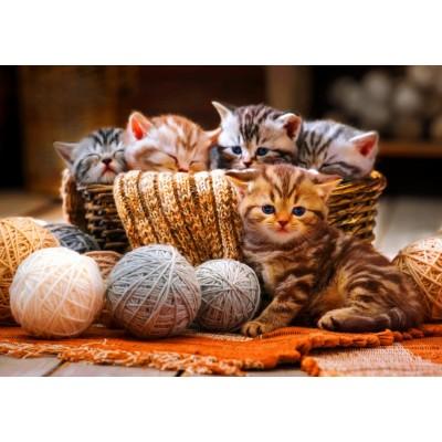 Bluebird-Puzzle - 1000 pieces - Kittens in Basket