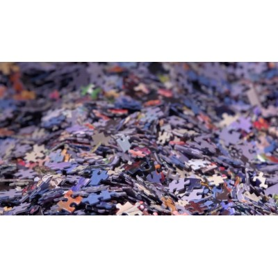 Bluebird-Puzzle - 1000 pieces - Mystery Puzzle without Box & without Image - Bag of 1000 Pieces
